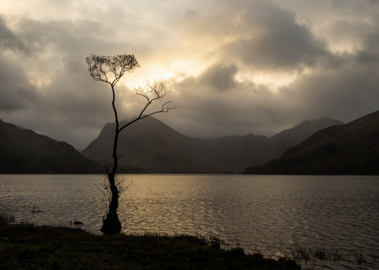 November - The Lone Tree, Buttermere